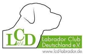 Logo LCD